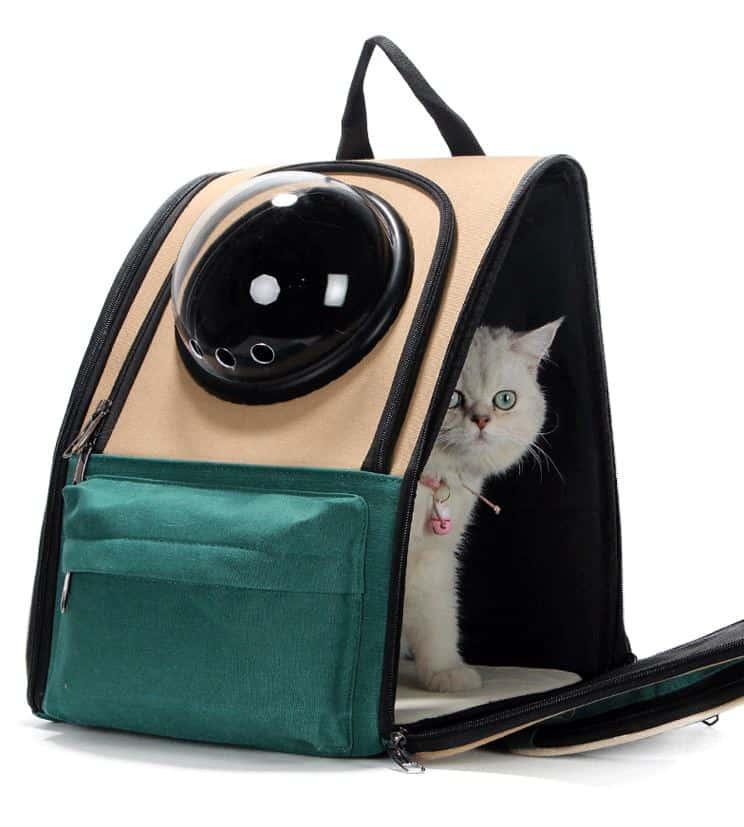 ชิปปิ้งจีน กระเป๋าใส่แมว สำหรับพกพาเจ้านายไปเที่ยว ชิปปิ้งจีน ชิปปิ้งจีน กระเป๋าใส่แมว สำหรับพกพาเจ้านายไปเที่ยว 140614