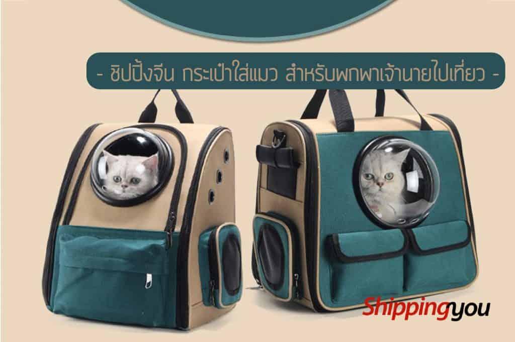 ชิปปิ้งจีน กระเป๋าใส่แมว สำหรับพกพาเจ้านายไปเที่ยว ชิปปิ้งจีน ชิปปิ้งจีน กระเป๋าใส่แมว สำหรับพกพาเจ้านายไปเที่ยว 140616 01 1024x681