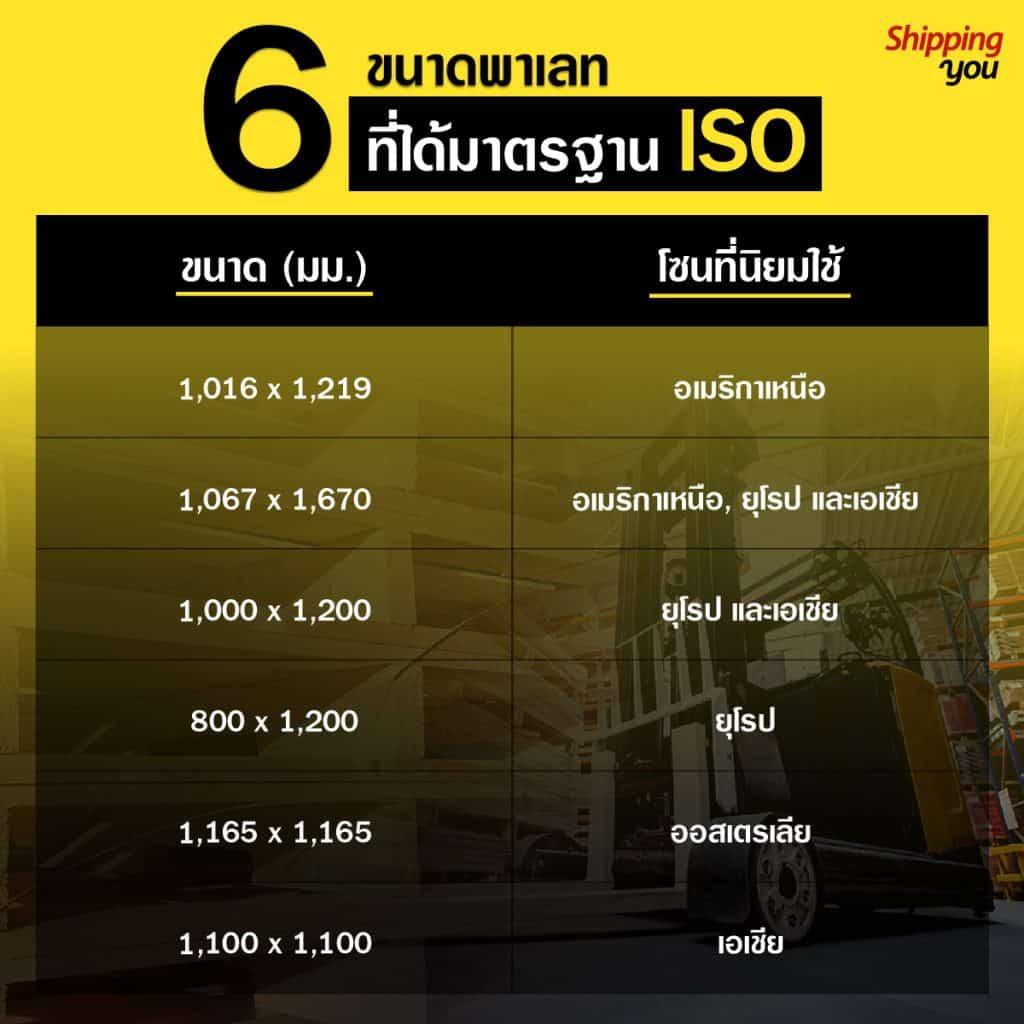 6 ขนาดพาเลท ISO shippingyou เว็บ ชิปปิ้ง ชิปปิ้ง 7 สิ่งน่ารู้ของ Euro Pallet สำหรับการขนส่งระหว่างประเทศ 6                             ISO shippingyou              1024x1024
