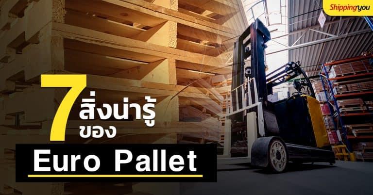 ชิปปิ้ง 7 สิ่งน่ารู้ของ Euro Pallet Shippingyou ชิปปิ้ง ชิปปิ้ง 7 สิ่งน่ารู้ของ Euro Pallet สำหรับการขนส่งระหว่างประเทศ 7                                         Euro Pallet Shippingyou fb 768x402